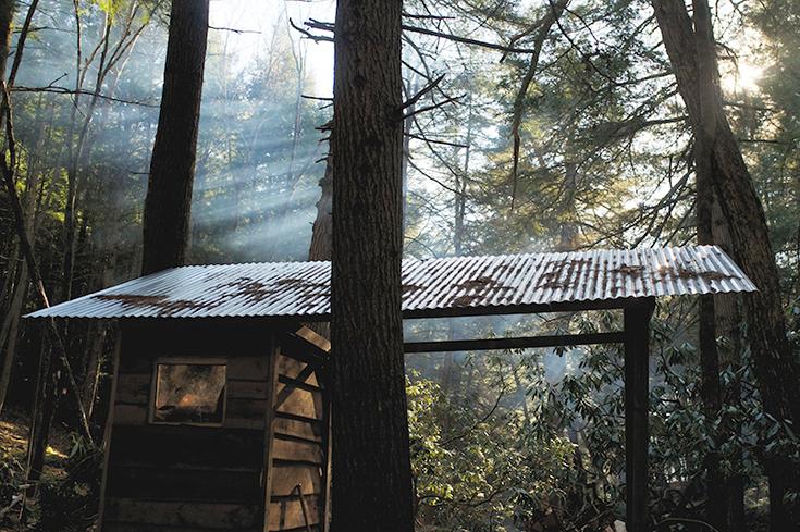 Peppermynta-Eco-Lifestyle-Beaver-Brook-Treehouse-Zach-Klein_8
