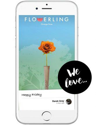 Eco Lifestyle: Flowerling – Blumengrüße versenden und Bäume pflanzen - App