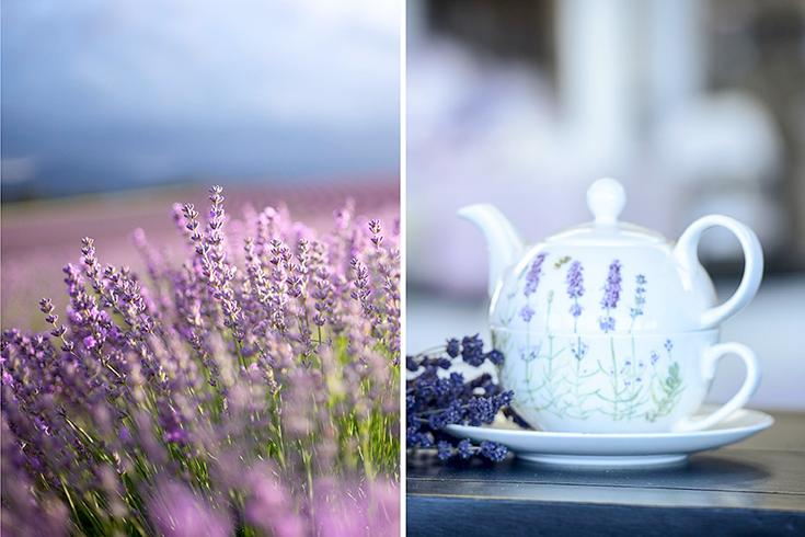 Peppermynta-Lavendel-Farm-Neuseeland-Bridgestowe_6