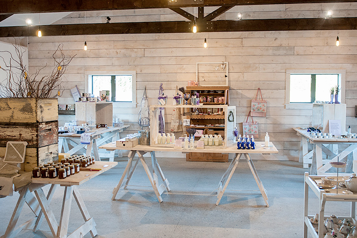 Peppermynta-Lavendel-Wanaka-Lavender-Farm-Neuseeland_3