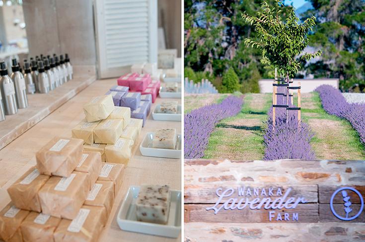 Peppermynta-Lavendel-Wanaka-Lavender-Farm-Neuseeland_5
