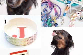 Eco Lifestyle und grün leben: Pelles World – Feine Produkte für den Hund von Welt - Julinka, Wau Marie, Oscars Design, Bubeck, Ware of the Dog, Karo Köter