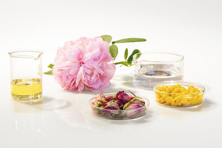 Ätherische-Öle-Alkohol-Rosen-Blüten-Dr.Hauschka-natürliche-Inhaltsstoffe-Naturkosmetik