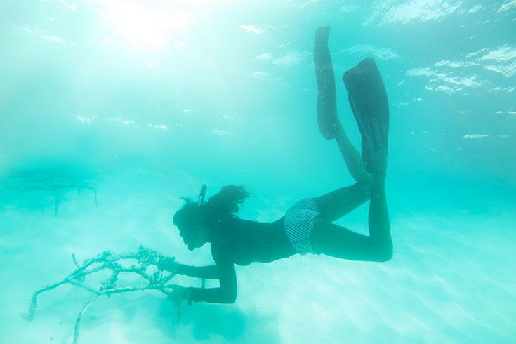 Eco-Lifestyle-Malediven-Eco-Luxury-Reethi-Faru-Korallensterben-Bleiche