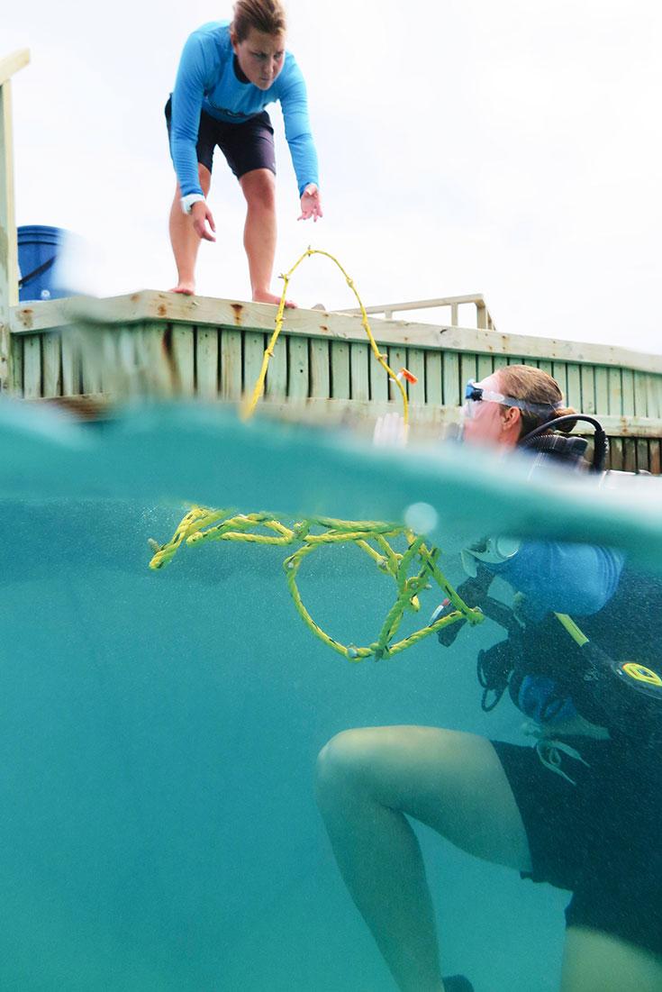 Eco-Lifestyle-Malediven-Eco-Luxury-Resort-Gili-Lankanfushi-Korallen-Bleiche-Sterben-Korallensterben-Coral-Lines-Project