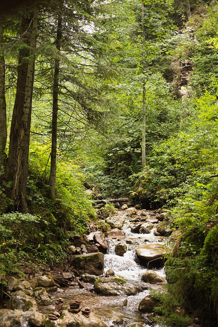 Eco-Lifestyle-Waldbaden-Trend-Japan-Shinrin-Yoku-Waldtherapie-Wald-Meditation-Wälder