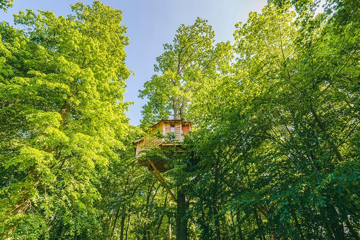 Naturhäuschen – Slow Travel in einem Ferienhaus im Grünen: Baumhaus