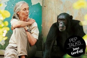 Reasons for Hope – ein Interview mit Primatenforscherin Jane Goodall