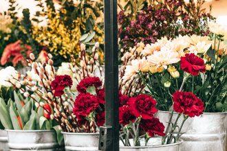 Bloomgerie – regionale und nachhaltige Blumen ohne Pestizide: öko, bio, fairtrade