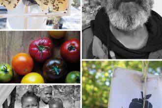 Peppermynta-Peppermint-Eco-Lifestyle-Alternative-Weihnachten-Geschenke-last-Minute-Geschenke-nachhaltig-fair-schenken