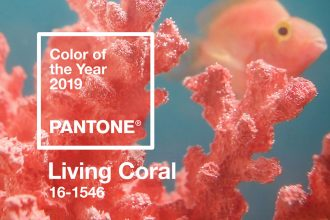 Peppermynta-Peppermint-Eco-Lifestyle-Pantone-Living-Coral-Farbe-des-Jahres-2019-color-of-the-year