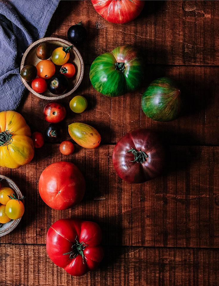 Eco-Lifestyle-Tomatenretter-Alte-Tomaten-Sorten-retten-Saatgut-Sortenvielfalt-kein-Monsanto