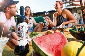 Muss Wein gespritzt werden? Wie Delinat Bio Wein revolutioniert: Rebbel Weine mit PIWI Traubensorten