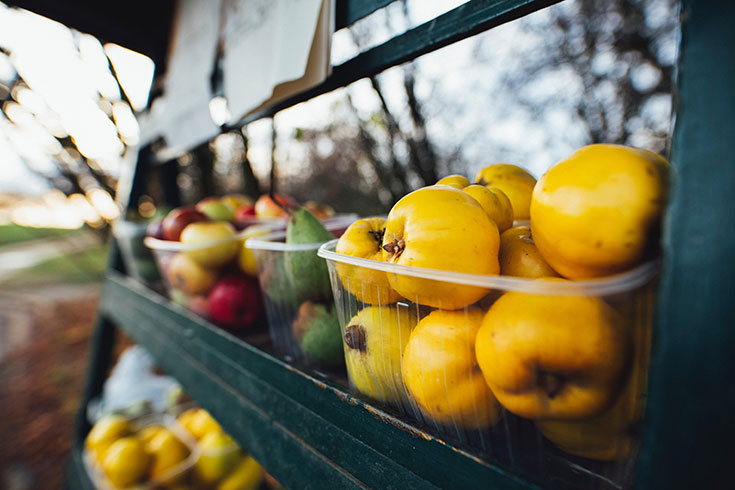 Bio Gemüse und Obst in Plastik – Passt das zusammen?