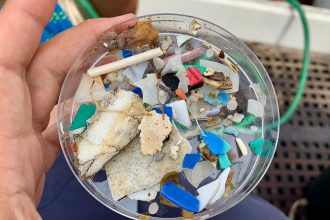 Mikroplastik im Meer – Eine Forschungsreise über das große kleine Problem: eXXpedition