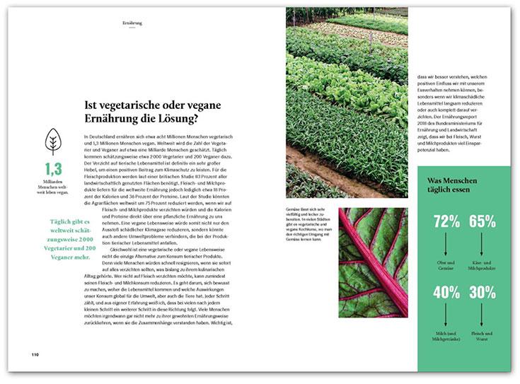 Nachhaltig leben JETZT Buch, Ratgeber – So einfach geht ein nachhaltiger Lebensstil
